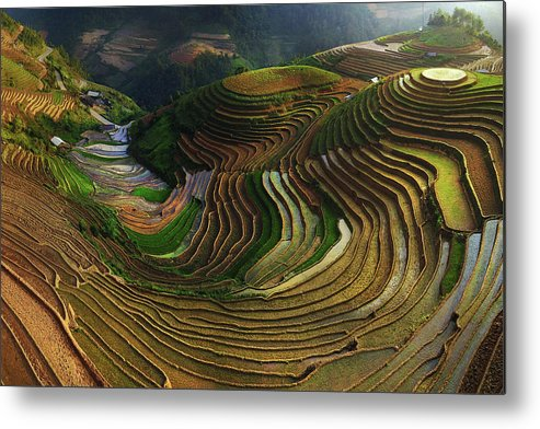 Terrace Metal Print featuring the photograph Mu Cang Chai - Vietnam by ??o T?n Ph?t