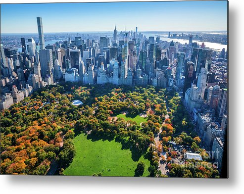 Central Park Metal Print featuring the photograph New York City Skyline, Central Park by Dszc