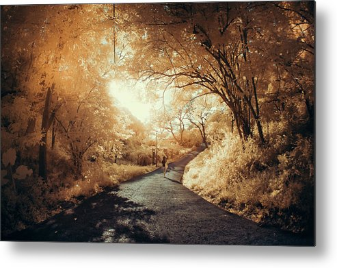 Shadow Metal Print featuring the photograph Pathway To Wonderland by D3sign
