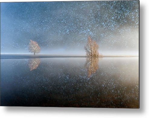 Scenics Metal Print featuring the photograph Reflections In A Lake In Winter, French by Jean-pierre Pieuchot