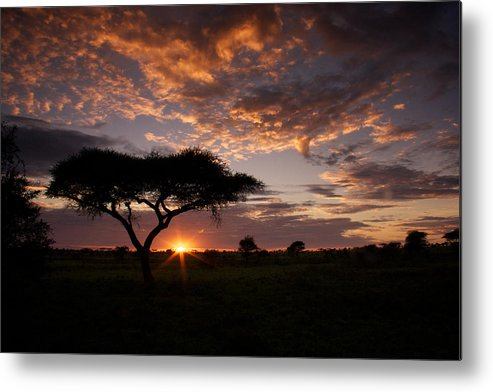 Sunrise Metal Print featuring the photograph Serengeti Sunrise by Michael Underhill