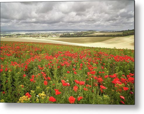 Scenics Metal Print featuring the photograph Sweeping Golden Fields by Getty Images