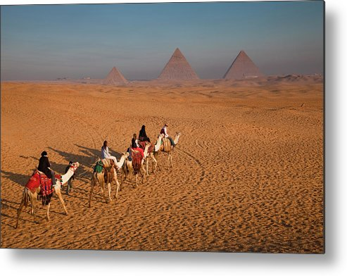 Working Animal Metal Print featuring the photograph Tourists On Camels & Pyramids Of Giza by Richard I'anson