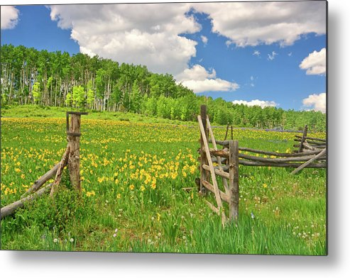 Tranquility Metal Print featuring the photograph Welcome To Heaven On Earth by Amy Hudechek
