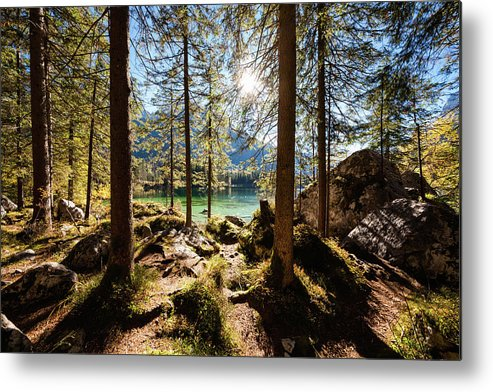 Tranquility Metal Print featuring the photograph Zauberwald In Autumn by Jorg Greuel
