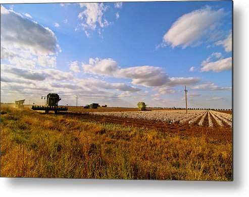 Farming Metal Print featuring the photograph West Texas Cotton Harvest by Robert Hudnall