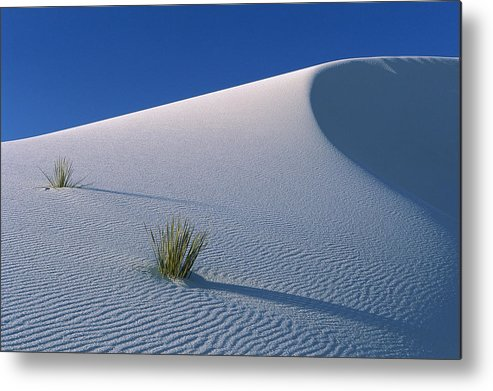Mp Metal Print featuring the photograph White Dunes In Gypsum Dune Field, White by Konrad Wothe