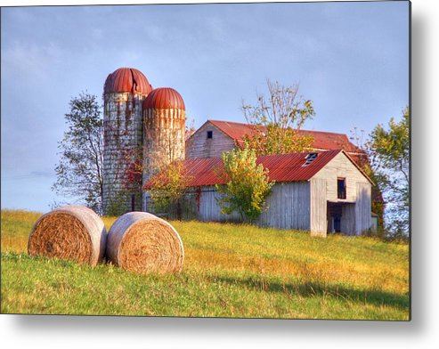 Barn Metal Print featuring the photograph Two by Mitch Cat
