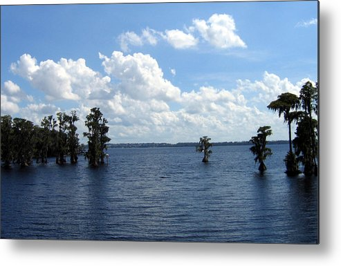 Scenic Lake Photograph Metal Print featuring the photograph Cypress Cove by Frederic Kohli