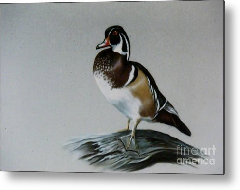 Duck Metal Print featuring the painting Woodie by Lynne Parker