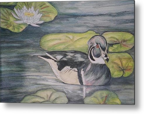 Wood Duck Metal Print featuring the painting Among The Lillypads by Debra Sandstrom