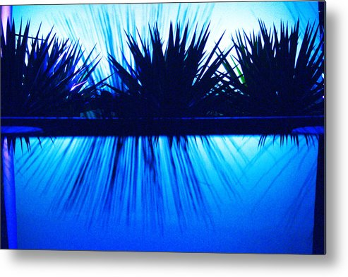 Blue Metal Print featuring the photograph Backlit by Blue by Richard Henne