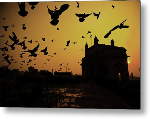 Horizontal Metal Print featuring the photograph Birds In Flight At Gateway Of India by Photograph by Jayati Saha