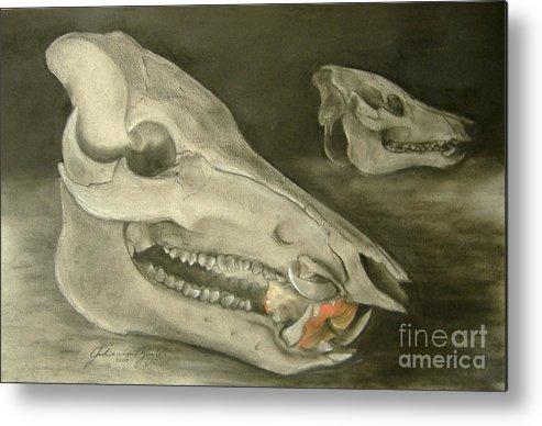 Pig Skull Metal Print featuring the drawing Bone Appetit by Julianna Ziegler