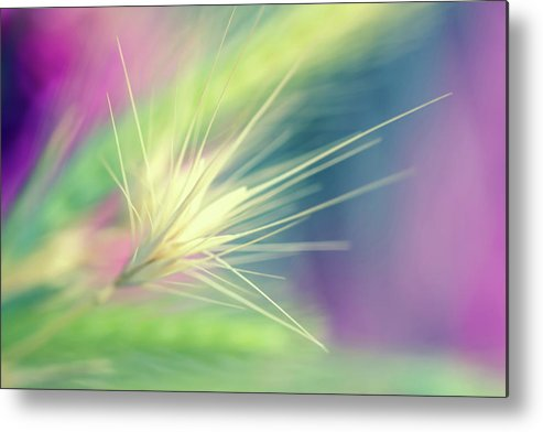 Photography Metal Print featuring the digital art Bright Weed by Terry Davis
