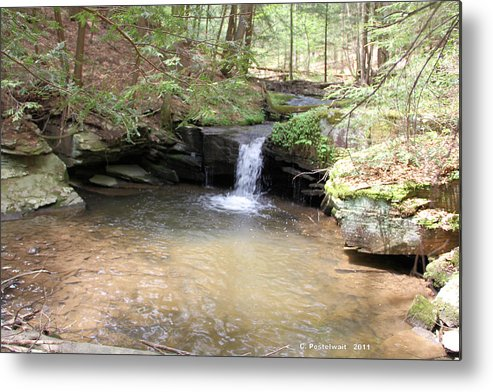 Streams Metal Print featuring the photograph Brook Trout Falls by Carolyn Postelwait