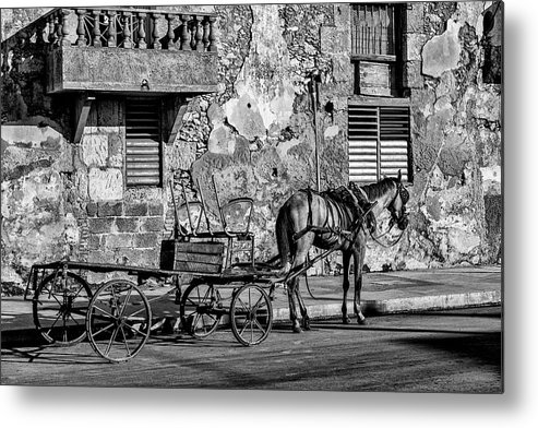 Cuban Horse Power; Cuban; Horse; Power; Horse And Carriage; Carriage; Hp; Cuba; Photography & Digital Art; Photography; Photo; Photo Art; Art; Digital Art; 2bhappy4ever; 2bhappy4ever.com; 2bhappy4evercom; Tobehappyforever; Metal Print featuring the photograph Cuban Horse Power BW by Erron