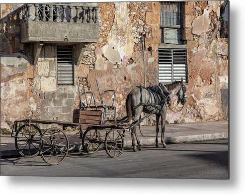 Cuban Horse Power; Cuban; Horse; Power; Horse And Carriage; Carriage; Hp; Cuba; Photography & Digital Art; Photography; Photo; Photo Art; Art; Digital Art; 2bhappy4ever; 2bhappy4ever.com; 2bhappy4evercom; Tobehappyforever; Metal Print featuring the photograph Cuban Horse Power FC by Erron