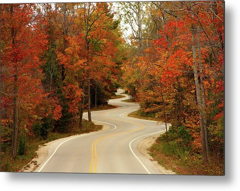 3scape Metal Print featuring the photograph Curvy Fall by Adam Romanowicz
