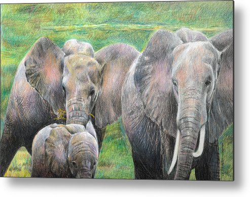 Elephant Metal Print featuring the drawing Family Outing by Arline Wagner