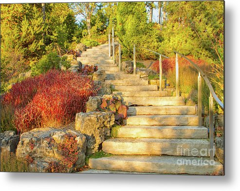 Gardens Metal Print featuring the photograph Invitation to Autumn by Marilyn Cornwell
