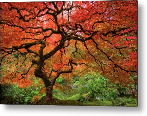 Horizontal Metal Print featuring the photograph Japenese Garden, Portland by Jesse Estes