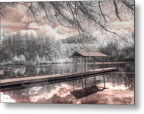 Lake Metal Print featuring the photograph Lake Dense Dupont State Recreational Forest by Jane Linders