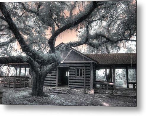 Oak Metal Print featuring the photograph Live Oak Log Cabin Myakka State Park Florida by Jane Linders