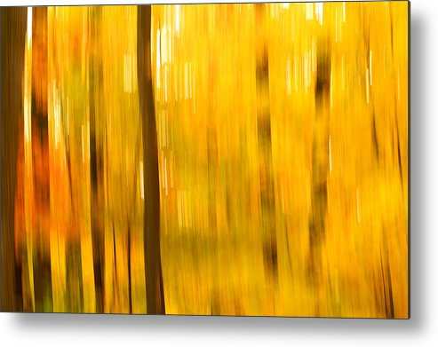 Abstract Photo Metal Print featuring the photograph Maple Magic by Bill Morgenstern