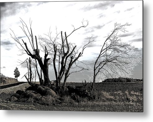 Photograph Metal Print featuring the photograph My Home Town-after The Storm by Robert Litewka