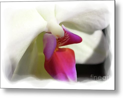 Orchid Metal Print featuring the photograph Orchid 1 by David Bearden