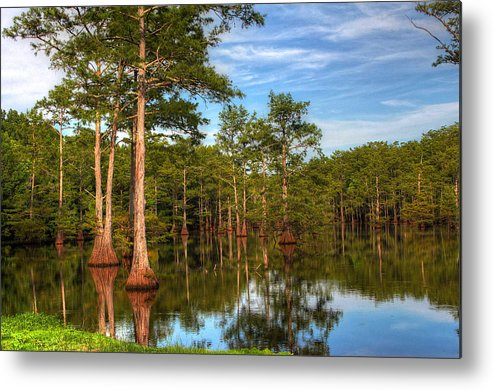 Quiet Metal Print featuring the photograph Quiet Afternoon At The Bayou by Ester McGuire