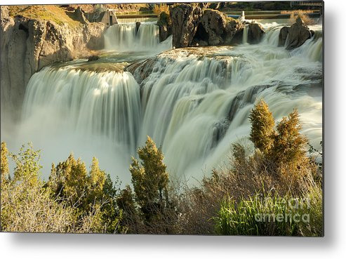 Waterfall Metal Print featuring the photograph Runoff at Shoshone Falls by Dennis Hammer