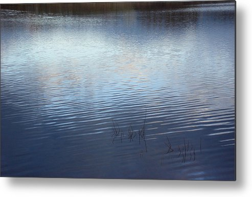 Nature Metal Print featuring the photograph Serenity by Marilynne Bull