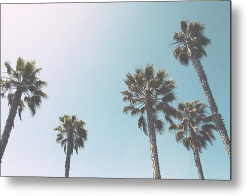 Palm Trees Metal Print featuring the photograph Summer Sky- by Linda Woods by Linda Woods
