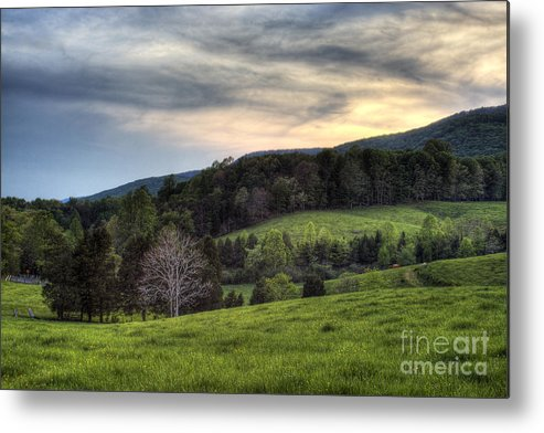 Landscape Metal Print featuring the photograph The Late Bloomer by Pete Hellmann