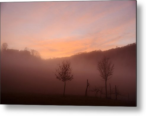 Trees Metal Print featuring the photograph Trees In A Foggy Sunset by Andrea Gabrieli