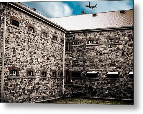 Freedom Metal Print featuring the photograph What Freedom Means by Kelly King