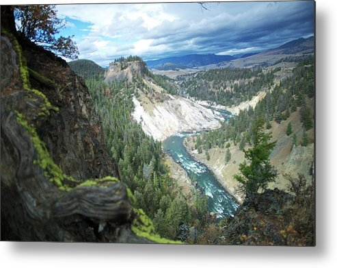 Scenics Metal Print featuring the photograph Yellowstone River by Dominik Eckelt