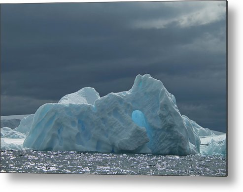 Iceberg Metal Print featuring the photograph Iceberg Along The Antarctic Peninsula by Mint Images - David Schultz