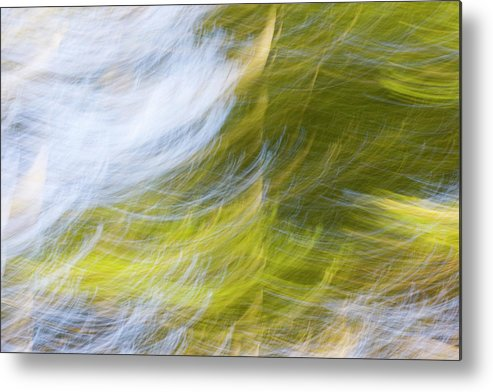 Full Frame Metal Print featuring the photograph Abstract Close Up Of Trees by Background Abstracts