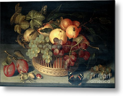Plum Metal Print featuring the drawing Basket Of Fruit And Admiral Butterfly by Print Collector