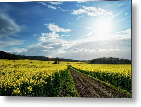 Tranquility Metal Print featuring the photograph Belvoir Fields by Petertowle