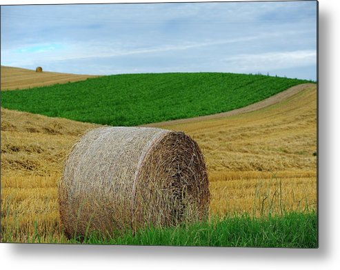Tranquility Metal Print featuring the photograph Biei...patchwork Road by By Alan Tsai
