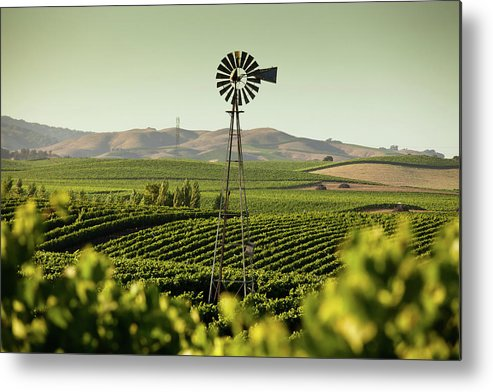 Sonoma County Metal Print featuring the photograph California Wine Country by Halbergman