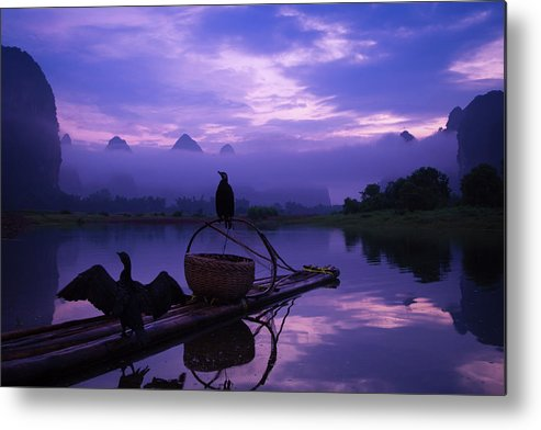 Chinese Culture Metal Print featuring the photograph Cormorant On Li River by Coffeeyu