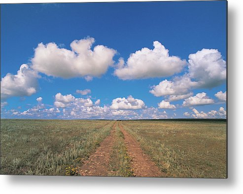 Grainy Metal Print featuring the photograph Dirt Road On Prairie With Cumulus Sky by Mimotito