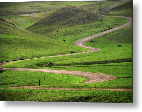 Tranquility Metal Print featuring the photograph Dirt Road Through Green Hills by Mitch Diamond