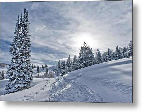 Shadow Metal Print featuring the photograph Escape From Beaver Creek by Rauch Jonathan Photographies