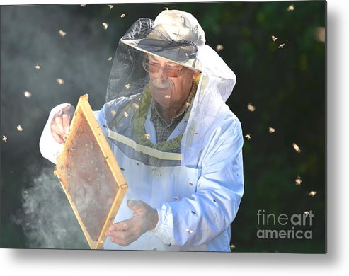 Bee Metal Print featuring the photograph Experienced Senior Beekeeper Making by Darios